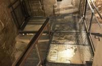 Entrée du Mikvé médiéval de Montpellier avec le résultat des récentes investigations archéologiques