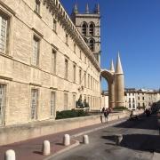 La Faculté de Médecine de Montpellier, la plus ancienne en activité au monde. Les Juifs jouèrent un rôle majeur en médecine pour la période médiévale.